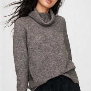 Aritzia Community Turleneck Sweater